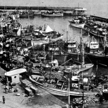 La memoria italiana de la anchoa, en conserva