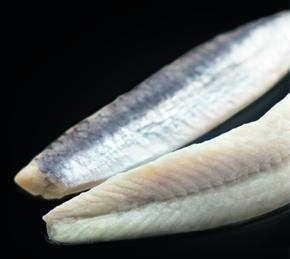 conservas-oliveri-boqueron